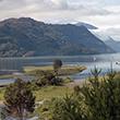 Natur- und Artenschutzprojekt im Süden Chiles