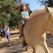 Abenteuerpark für Kinder